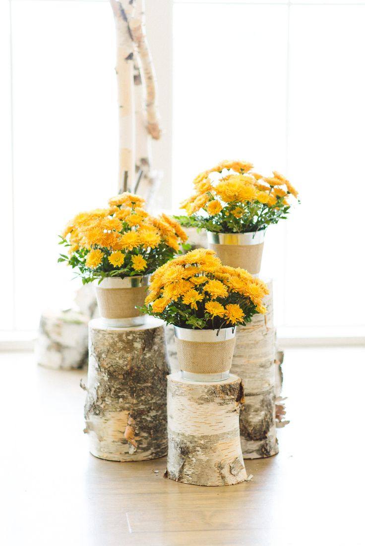 25 best ideas about fall wedding mums on pinterest fall wedding decorations fall wedding - Potted autumn flowers ...