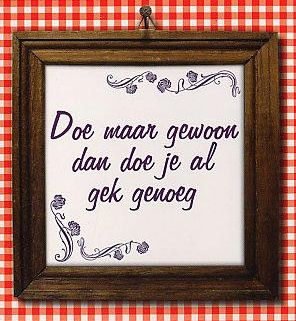 """Doe maar gewoon, dan doe je al gek genoeg"". Keep it simple, it's crazy enough."