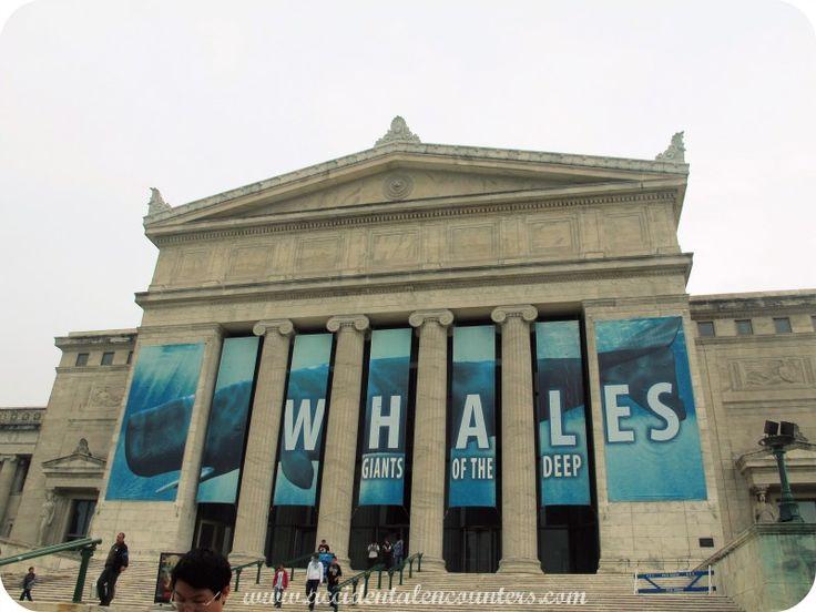 Museum Signs   Allen Signs