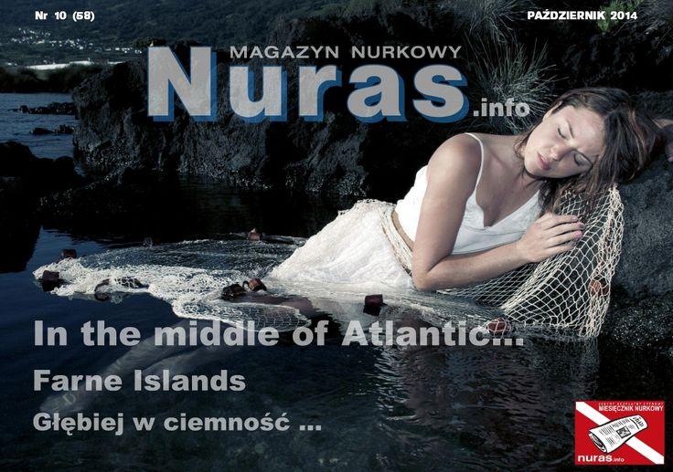 http://pdf.nurasonline.com/nr_58_150.pdf  photo: www.gosiakopec.pl