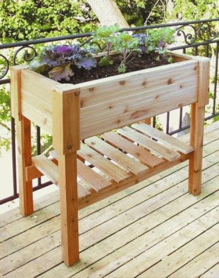 Rectangle Wooden Planter Box - 24 3/4in Tall
