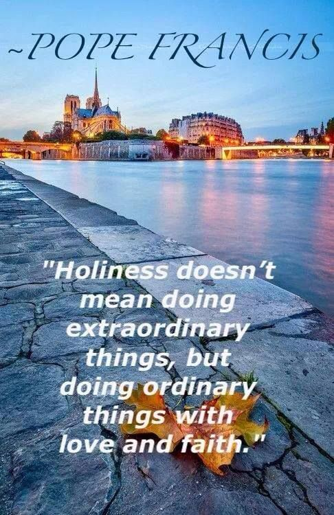"""""""Holiness:""""  Pope Francis breaks it down; beautiful. #PopeFrancis #Holiness #Faith"""