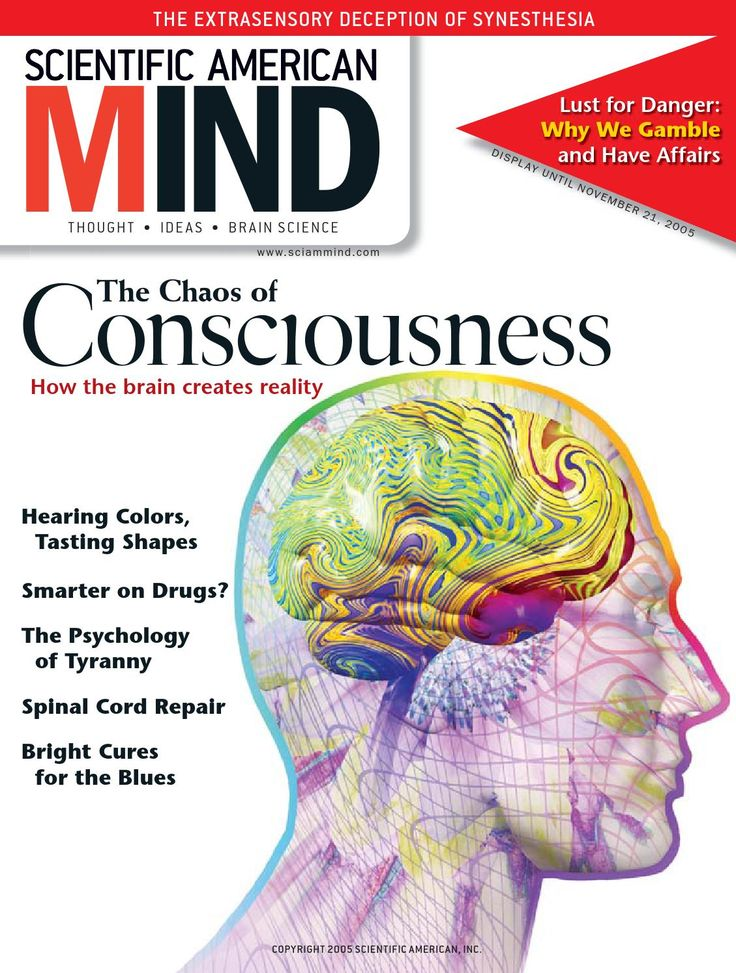 brain consciousness essay from mind new science The new science of consciousness: exploring the complexity of brain, mind, and self by paul l nunez book review click to read the full review of the new science of consciousness: exploring the complexity of brain, mind, and self in new york journal of books review written by constance scharff phd.