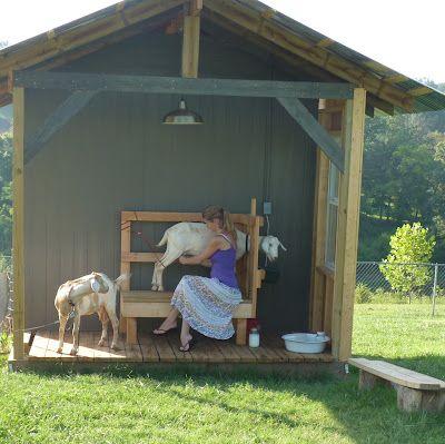 17 Best Ideas About Goat House On Pinterest Goat Shelter