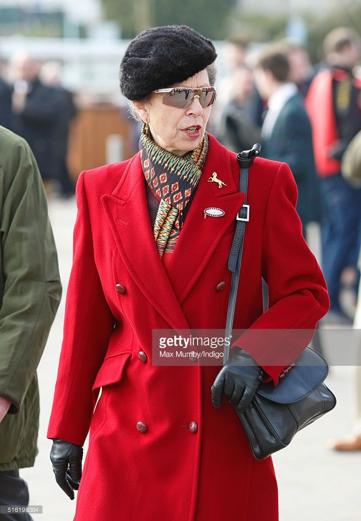 Princess Anne, The Princess Royal attends day 3, St Patrick's Day, of the Cheltenham Festival on March 17, 2016 in Cheltenham, England.