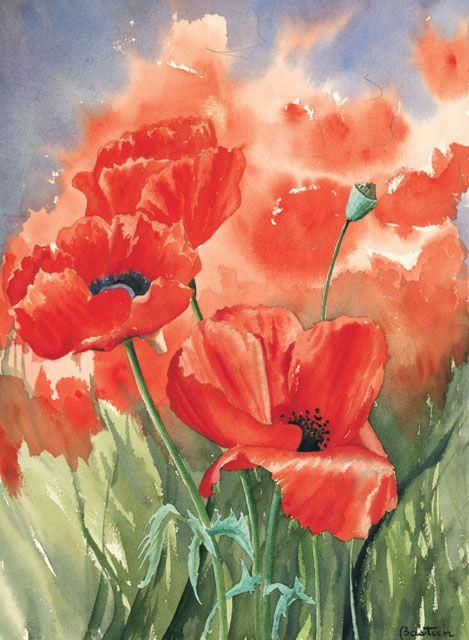 Poppies  Aquarelle Pavot Aquarelle - Gerard Bastien