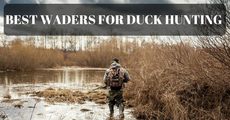 The Best Waders for Duck Hunting