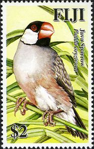 2007 Fiji Java Sparrow Stamp