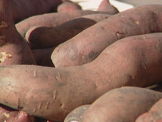 HOW TO PLANT AND GROW SWEET POTATOES  Sweet potatoes come in two forms: vining and bush varieties. Both types thrive in the hot summer sun and are relatively easy to grow.  (how to tell which type you got?)
