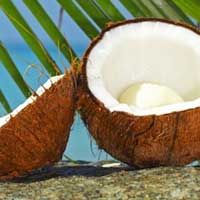 Польза и вред применения кокосового масла в косметологии, его свойства и воздействие на волосы, кожу и организм человека в целом. Как применять с пользой.