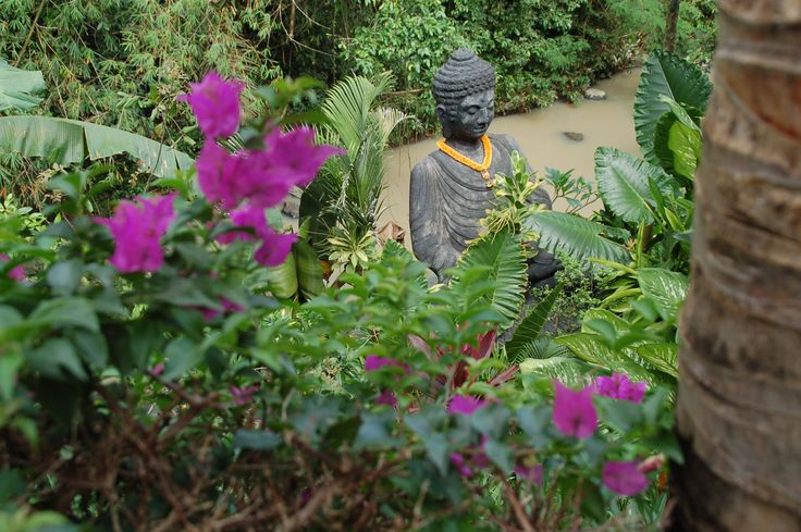 Are big Buddha statue in Sahaja Sawah Resort. A hidden gem.. #sahajasawahresort #buddha #buddhastatue #buddhism #nature #holiday #villas #Baliresort #balivilla #balilife #Bali #islandofgods