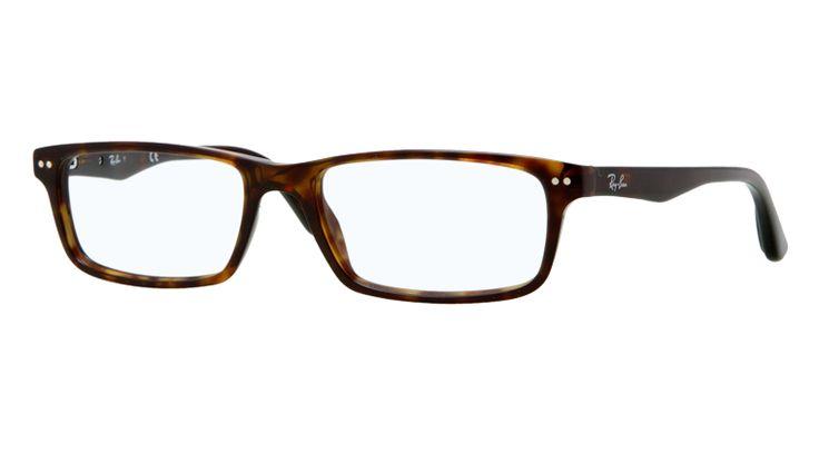 ray ban tortoise shell glasses !