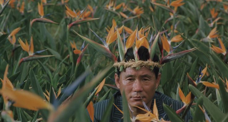 "communicants: ""Boiling Point (Takeshi Kitano, 1990) """