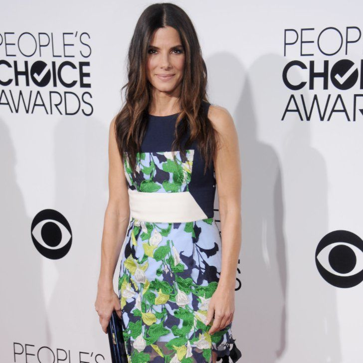 Pin for Later: Sandra Bullock Has Adopted a Little Girl Named Laila!