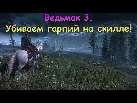 Ведьмак 3. Убиваем стаю гарпий на скилле! - YouTube