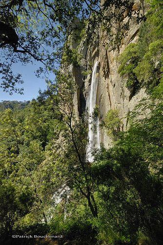 La cascade de Piscia di Ghjaddu - Forêt de Barocaggio Marghese - Corse du Sud