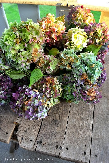 How to dry hydrangeas | FOLK Contributed by @Donna - Funky Junk Interiors: Gardens Ideas, Favorite Flowers, Dry Hydrangeas, Crafts Ideas, Funky Junk Interiors, Gardening, Blog, Dry Flowers, Fall Colour