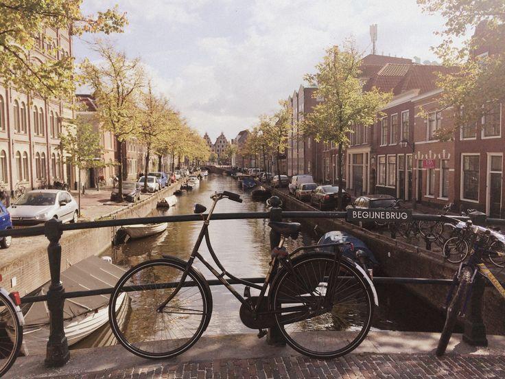Haarlem roadtrip