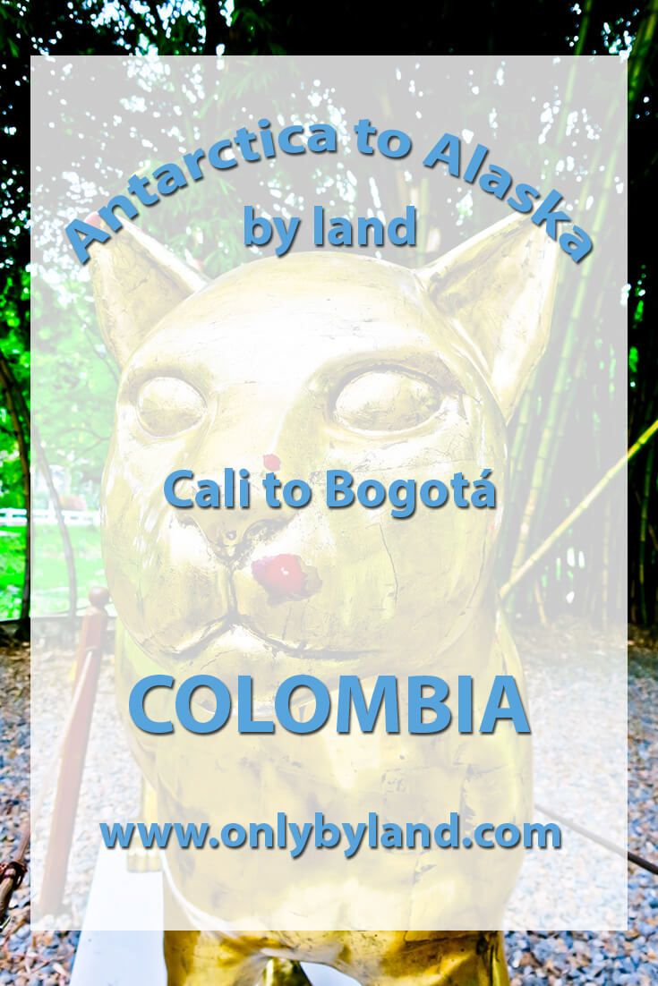 A visit to the points of interest of Cali, Colombia including, Cali zoo, El gato del rio, Salsatecas – Cali is the home of salsa, Calima gold museum, Cali tower (and view of the city), Cristo Rey (and view of the city), Ermita church, San Pedro Apostol Metropolitan Cathedral, Chipechape shopping mall, San Antonio old town (and view of the city), before taking the bus to Bogota
