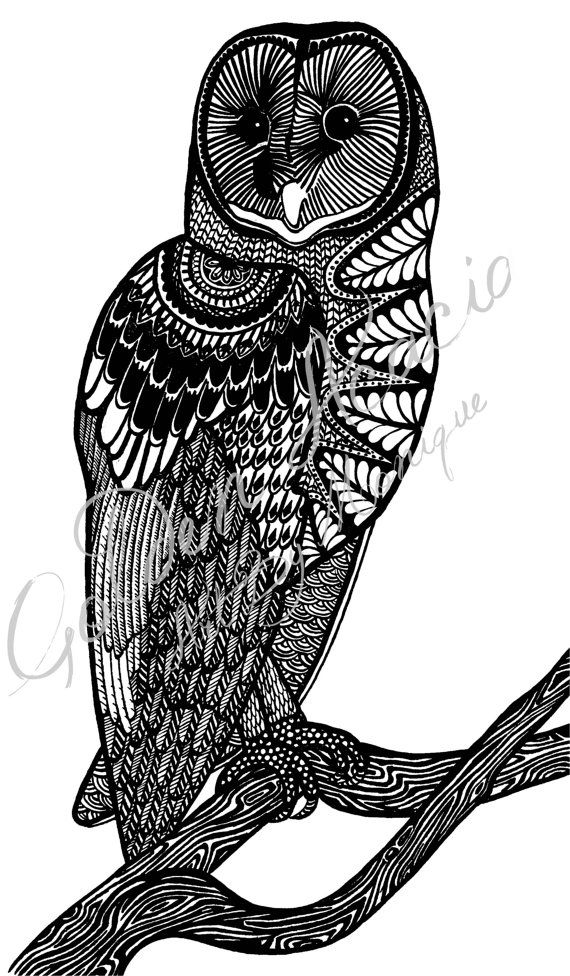 Tasmanian Masked Owl: Native to Australia, I have painted this beautifully majestic bird in intricate pen and ink. Wisdom, pattern, bird on Etsy, $25.00 AUD