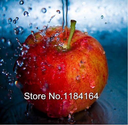 Hot Sale Water Apple full diamond painting party cross stitch needlework patterns diamond embroidery BK-1062 #Affiliate