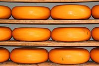 Cheese is something typical Dutch. The Netherlands is known because of there cheese, and Dutch people are often called 'kaaskoppen AKA cheese heads'. I really like the taste of it, and I eat it every day on my bread :) (Joelle)