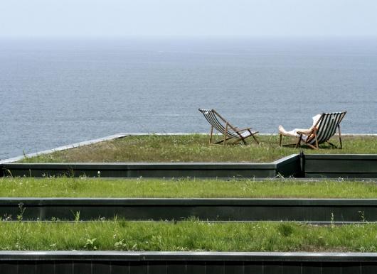 Em Detalhe: Cortes Construtivos de Telhados Verdes