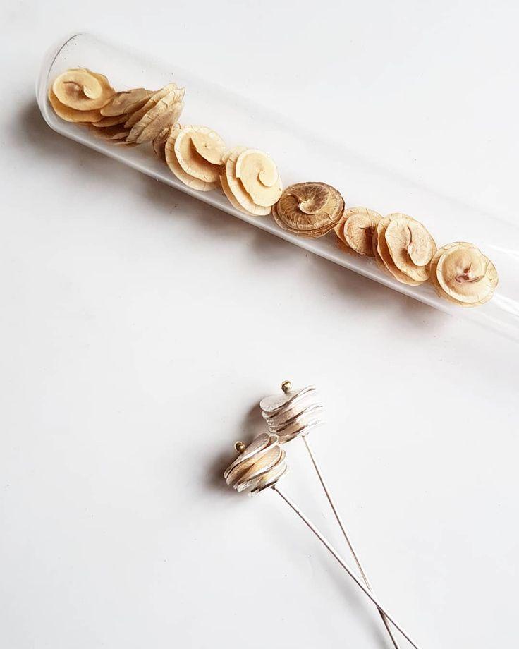 Work in progress... . . . #jewellery #bijoux #schmuck #nature #inspiredbynature #contemporary #seed #seekthesimplicity #minimalist #maker #design #handcrafted #faitmain #handmade #seedpods #botanical #etsy #brittabrandjewellery #workinprogess #makersgonnamake #craft #simplicity #creativityfound #slowfashion #madeinfrance