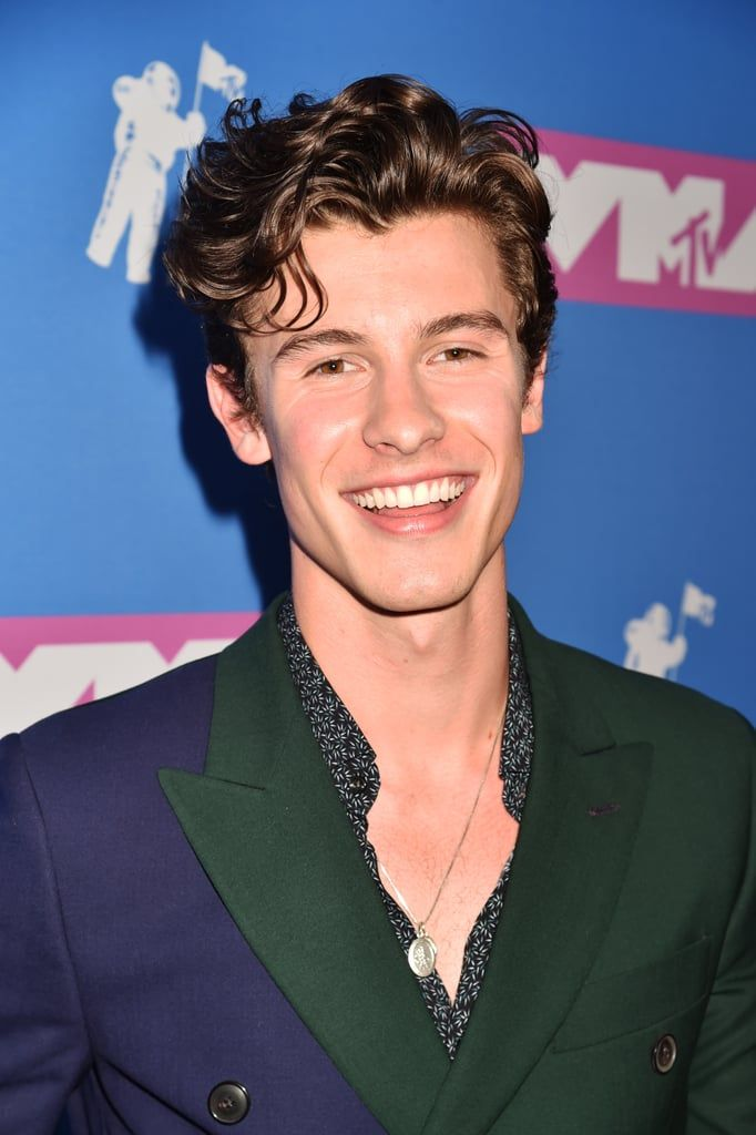 Shawn Mendes attends the 2018 MTV Video Music Awards at ...