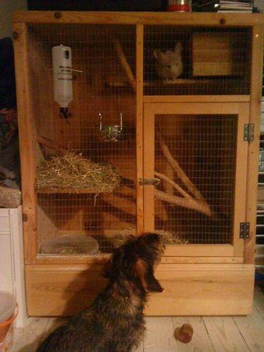69 best Rabbit Cages images on Pinterest | Rabbit hutches ...