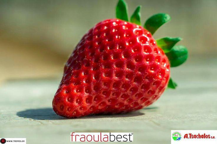 Wanna eat it....
