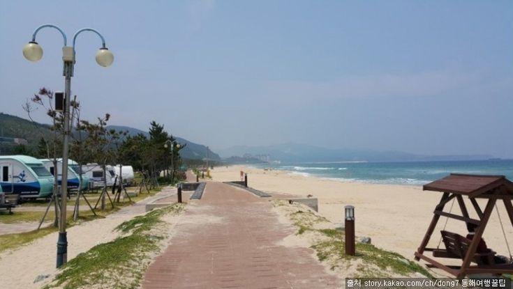 망상오토캠핑리조트 : 울창한 송림과 깨끗한 백사장, 맑은 비취빛 푸른 바다가 어우러진 자연친화적 자동차 전용 캠핑장