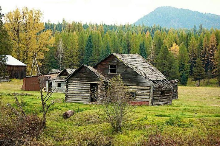I love fall in Montana.