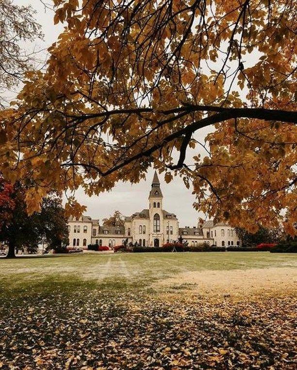 Kansas State University >> Kansas State University Kansasstateuniversity Instagram