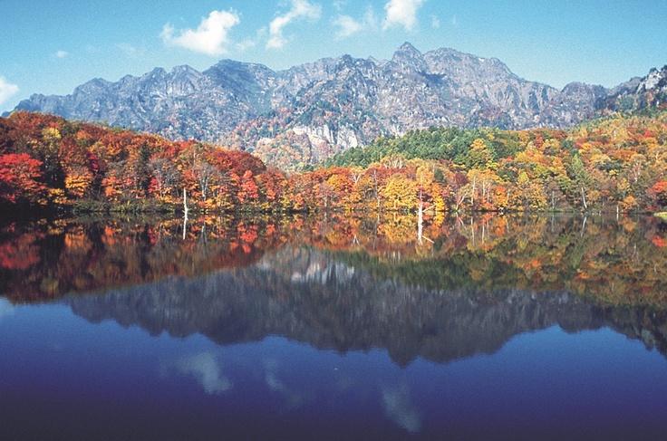 おすすめなのが鮮やかに色づいたモミジやカラマツが湖畔を彩る紅葉シーズンです。