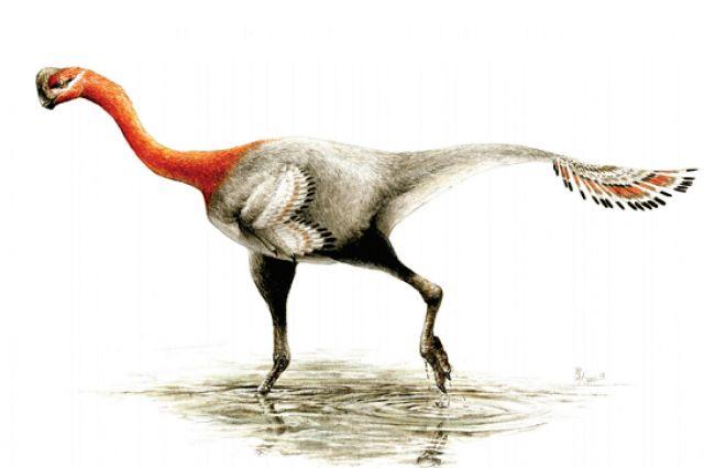 New Dinosaur Named After Decades Of Mistaken Identity | IFLScience