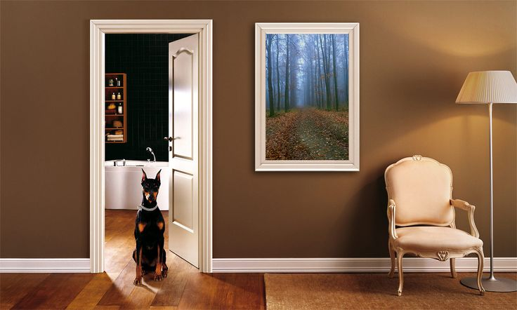 https://www.etsy.com/listing/398241831/autumn-forest-digital-photo-instant