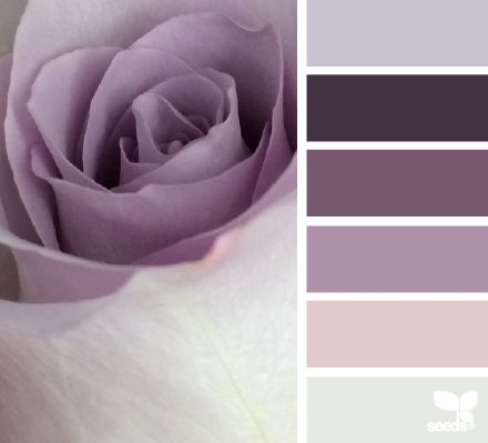 This website has pre-made color palettes. I thought this one was pretty and featured your purples.