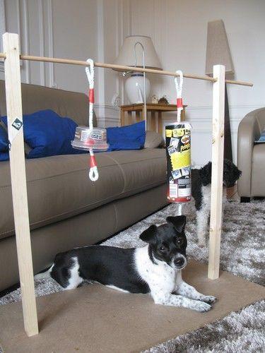 die besten 25 hundespielzeug selber machen ideen auf pinterest pets bursitis schulter und. Black Bedroom Furniture Sets. Home Design Ideas