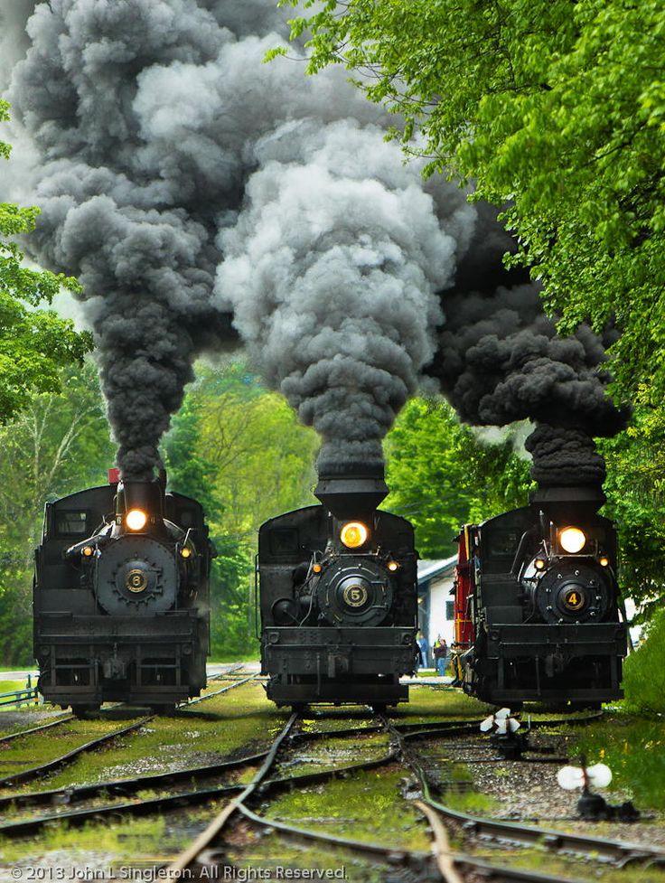 The Race. Cass Scenic Railroad RailFan Weekend, Cass, WV.