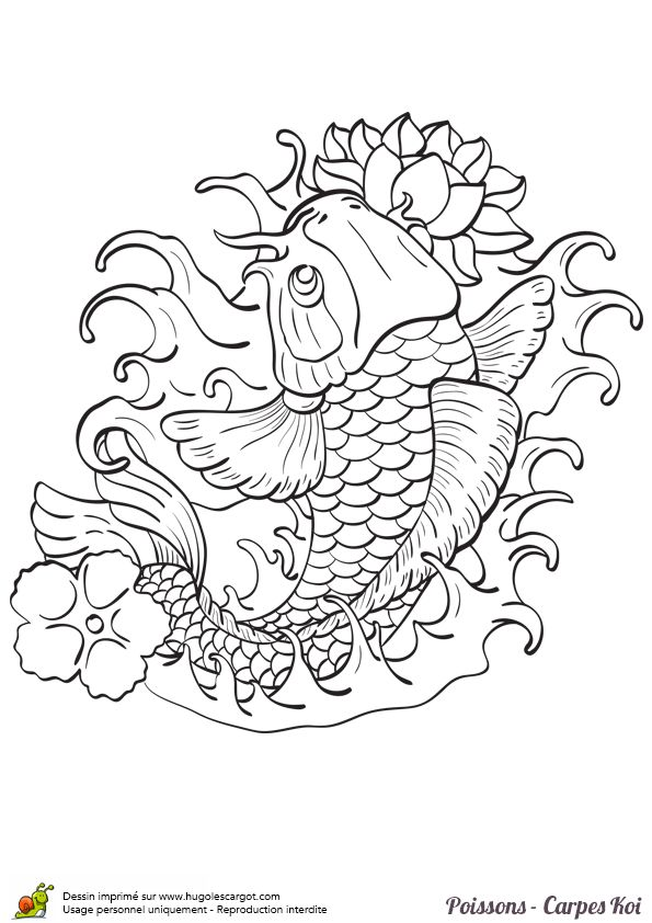 25 best coloriage images on pinterest coloring books coloring