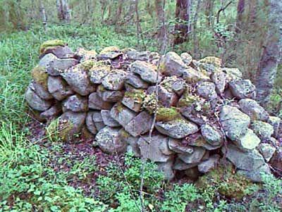 Каменные кладки в глухом лесу | СТОЛИЦА на Онего - общественно-политическая интернет-газета Карелии