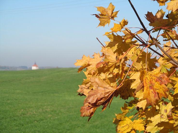 W oddali widać wieżyczkę kościoła w Szestnie.  www.it.mragowo.pl