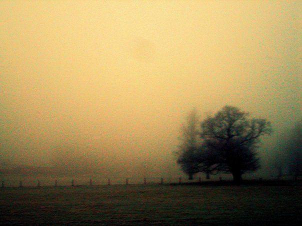 Dunstall grounds - Staffordshire England - Copyright Anna Christoforou