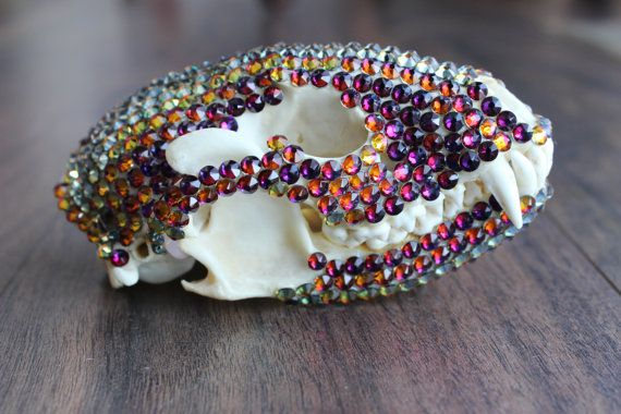 Rainbow Crystal covered Raccoon Skull by GlimmerandGrim on Etsy