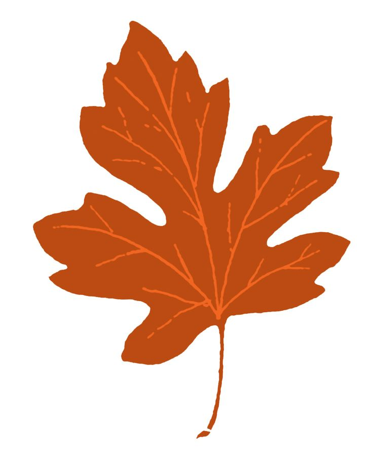 Vintage Fall Clip Art - Maple Leaves - The Graphics Fairy   Love Graphics Fairy!