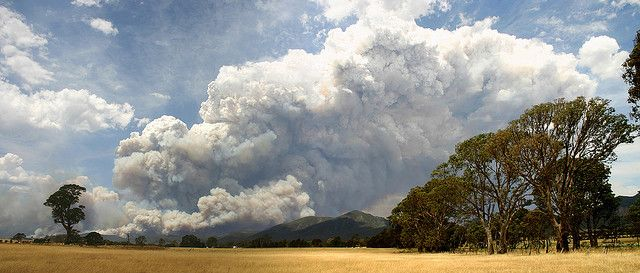 Mt Lubra, Grampians Fire, from 20th January till controlled 9th Feb 2006, burnt approx. 128,800 ha, at its peak fought by 50 4WD, 113 trucks, 17 dozers, 9 helicopters & 6 planes.