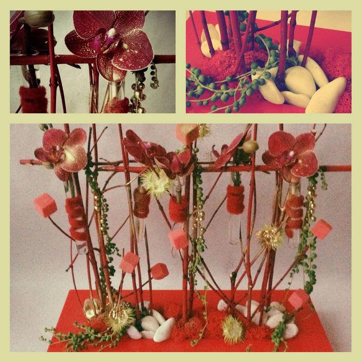 Composition parall le no l composition orchid e for Multiflor brive