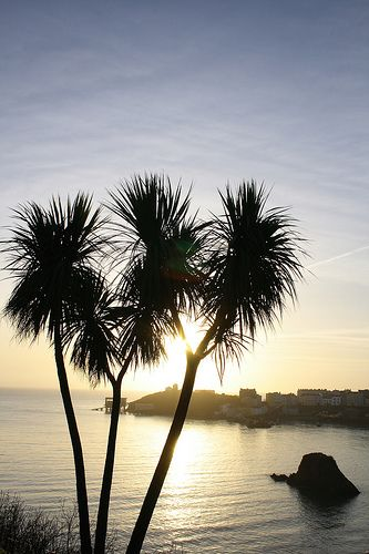 Early morning in Tenby