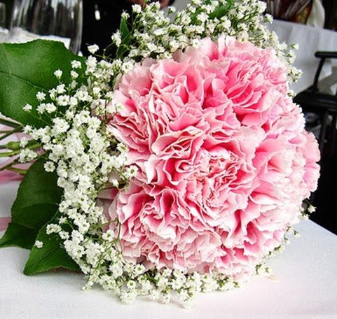 Baby's Breath & Pink Carnations Bouquets   Carnations are so underrated but really when bunched together they have a ruffly beauty.